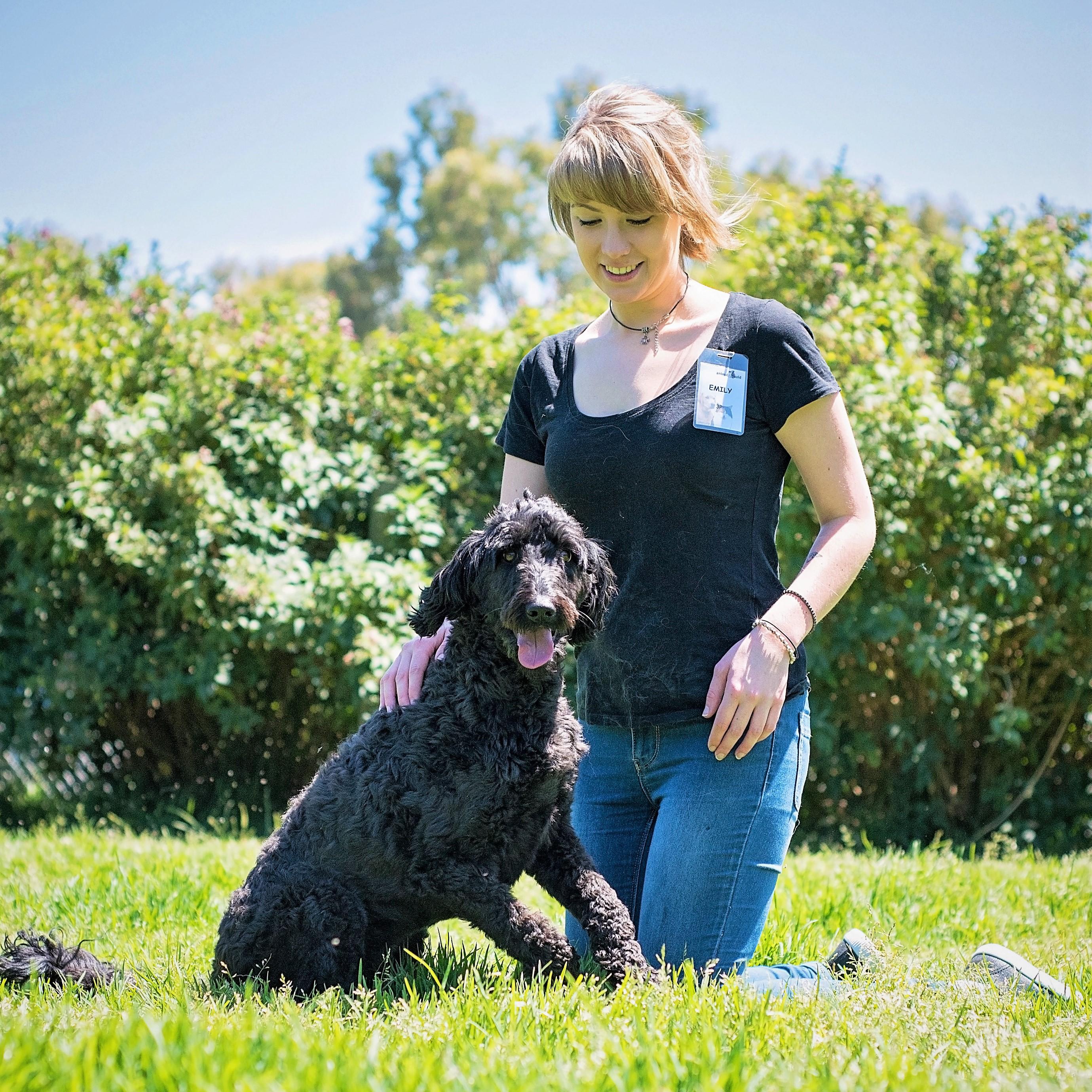Student Volunteer at Animal Aid