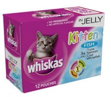 Kitten food donations