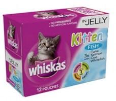 Kitten food donations